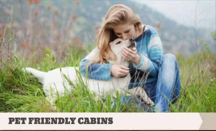 Eagles Ridge Resort pet friendly cabin rentals in Pigeon Forge