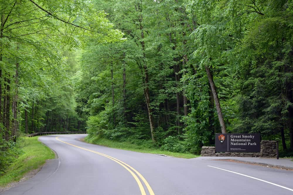 Road leading into the Great Smoky Mountains National Park.